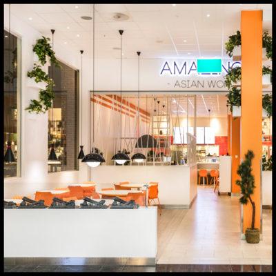 AmasingAsianWok-ram_209